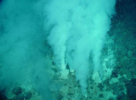 Researchers find animals with hydrogen fuel cells in the deep sea's hydrothermal vents
