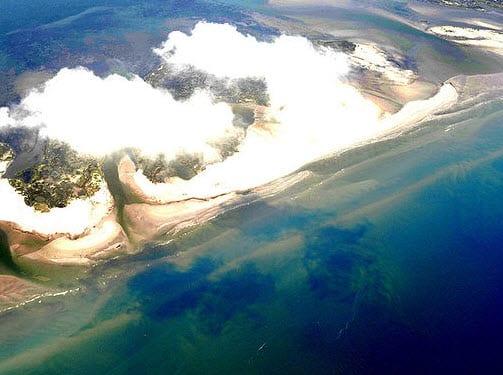 Deepwater Oil Spill