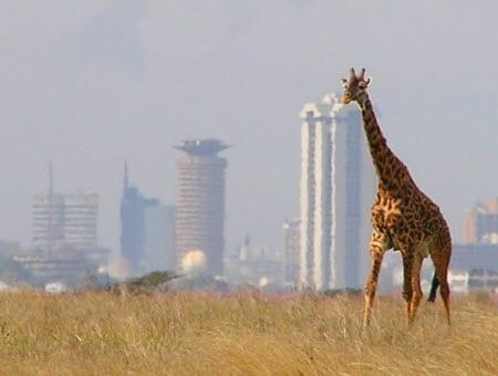 Kenya - Solar Energy
