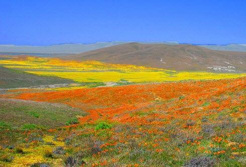California hybrid energy project