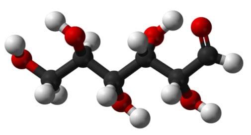 Glucose Chain Model