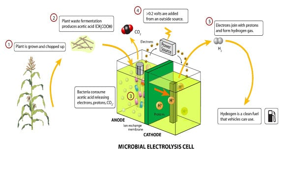 Microbial fuel cells process
