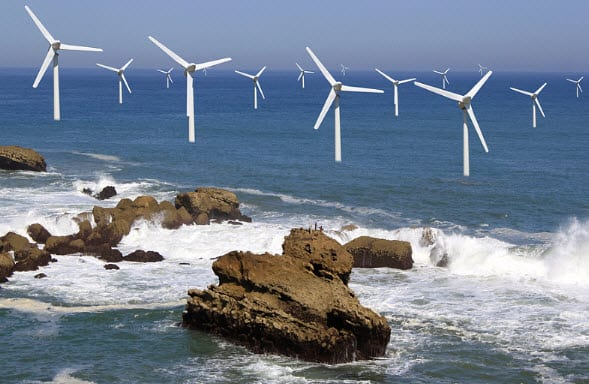 Offshore wind energy systems could be a boon for marine life