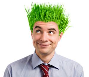 green alternative energy business