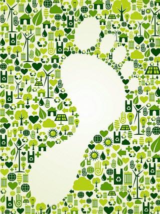 Renewable Energy - Forward Step