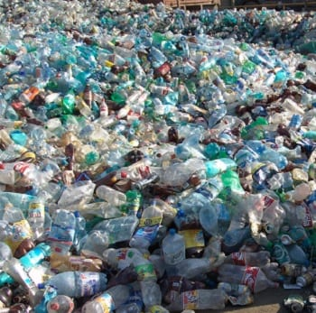 Plastic Pollution - Plastic Bottles