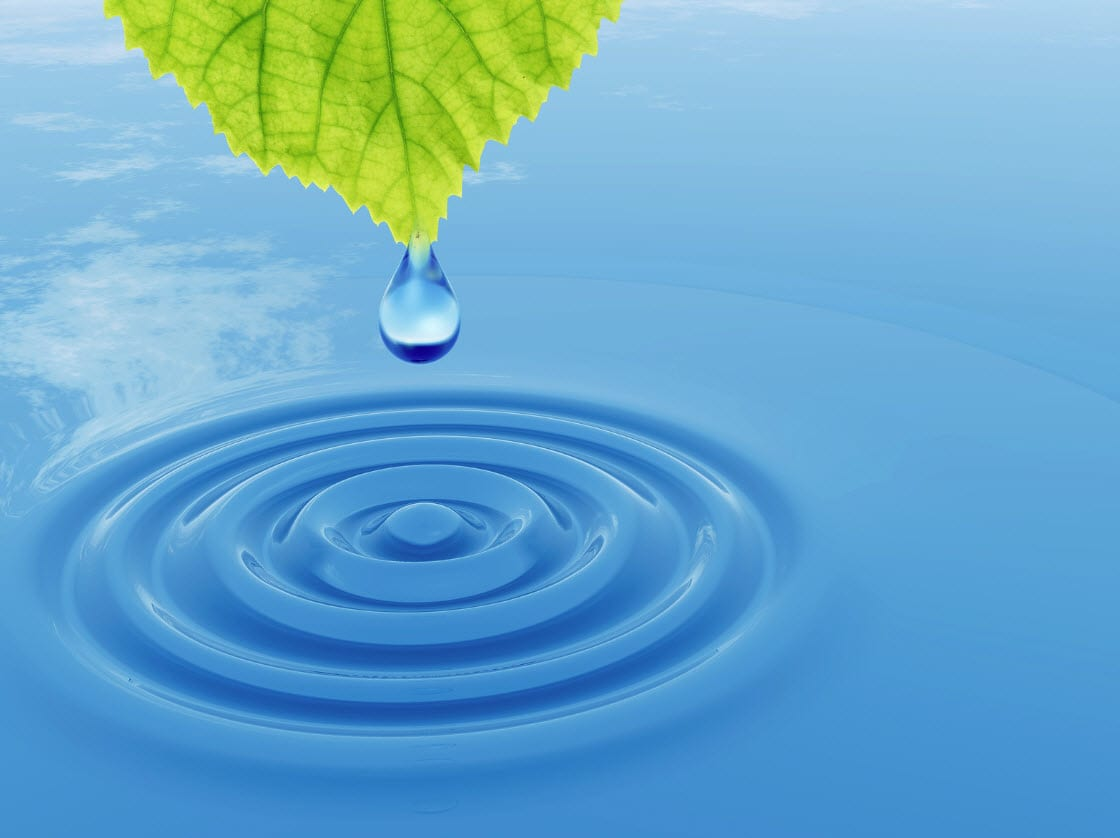 Hydrogen Fuel Cells - Hydrogen  Energy