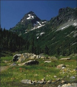 Geothermal Energy - Mount Baker Snoqualmie National Forest