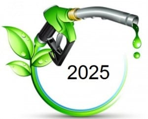 Hydrogen Fuel - 2025