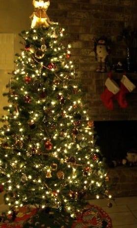 Christmas Tree - Carbon Emissions