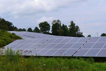 Solar Farm - Image of solar panels