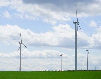 Wind Energy Market - Field with Wind Turbines