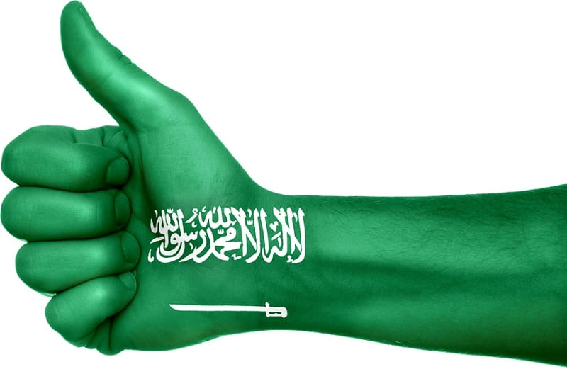 Saudi Arabia Lanuches Renewable Energy Plan - Saudi Arabia Flag on hand
