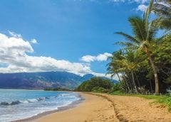 Renewable Energy - Beach in Hawaii