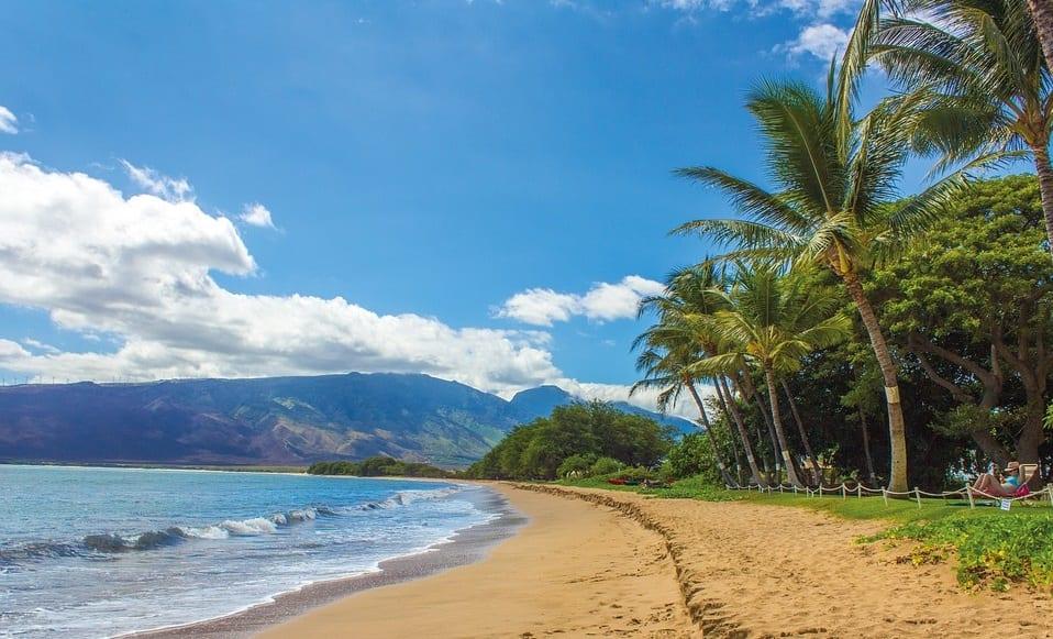 Renewable Energy - Beach in Hawaii