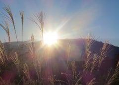 Solar Energy - Albuquerque