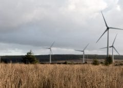 Wind Energy Projects - Wind Turbines in Field