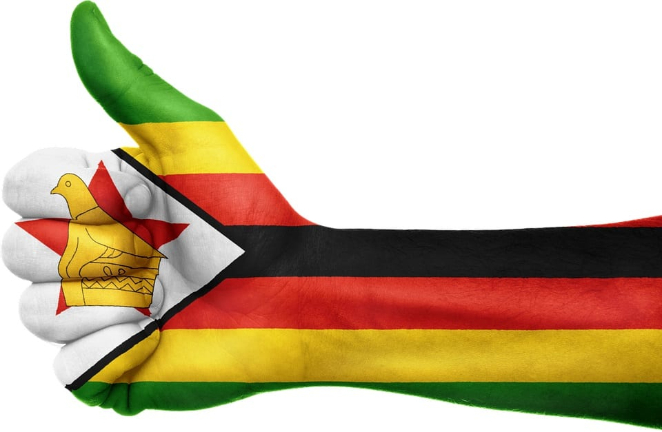 Support for Zimbabwe Wind Energy Study - Zimbabwe flag on arm