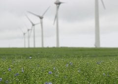 Wind Turbines in field - Wind energy