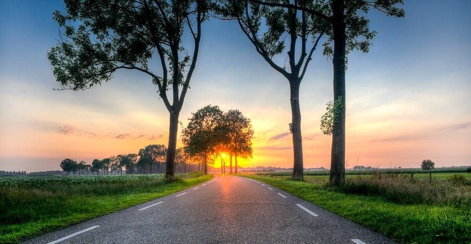 Renewable Energy - Image of Road at Sunset in the Netherlands
