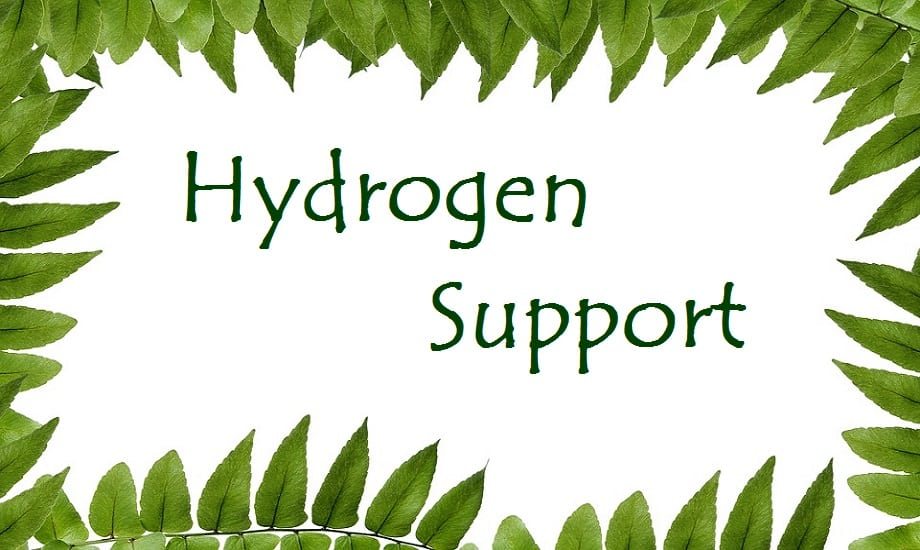 Hydrogen Research - DOE Support