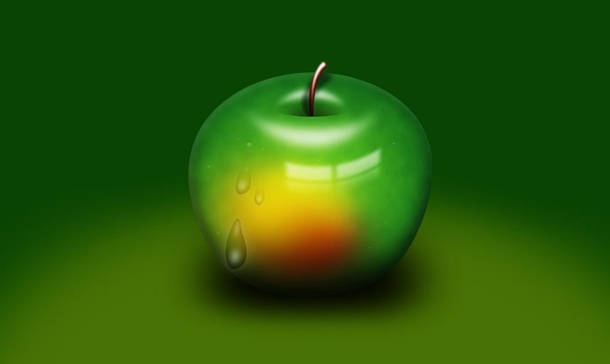Apple - Climate Change - Renewable Energy - China Clean Energy Fund