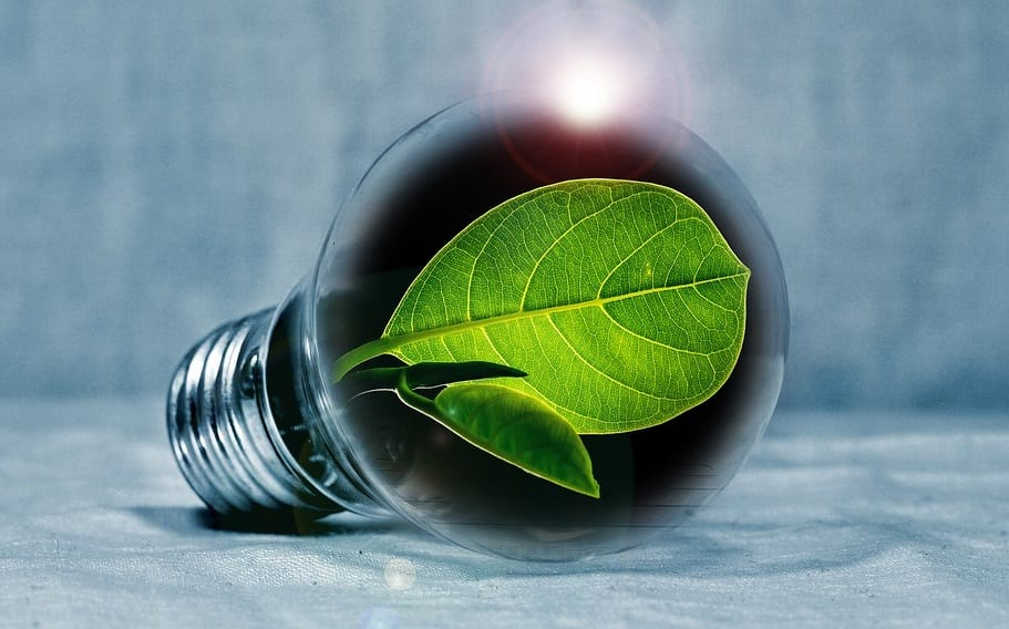 Biofuel production - Green Energy