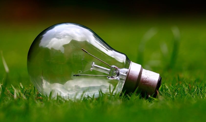 New renewable Energy Fund partnership between Vitol and Low Carbon - Green grass and light bulb