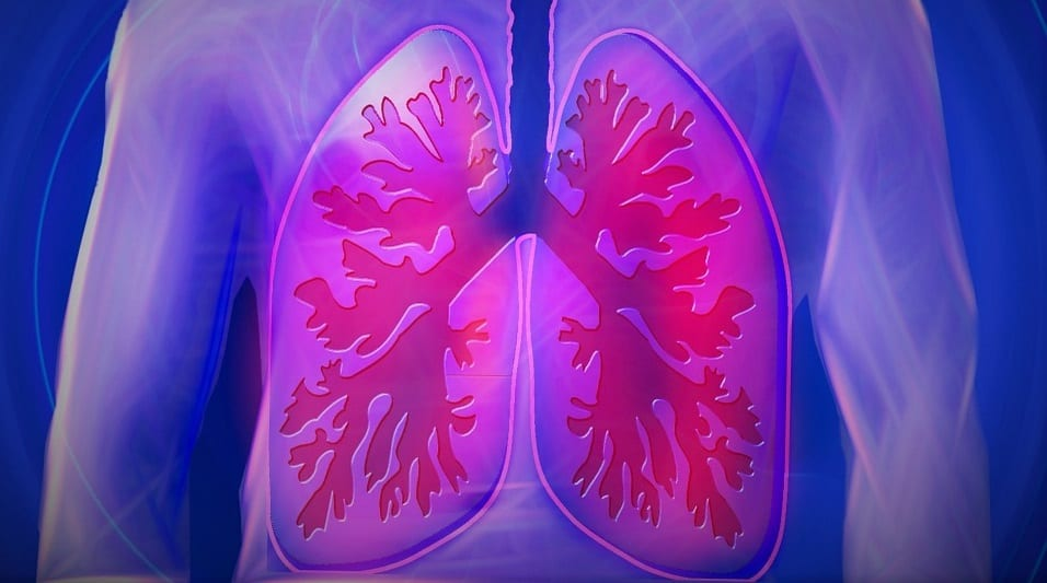 clean fuel cell power - image of lungs