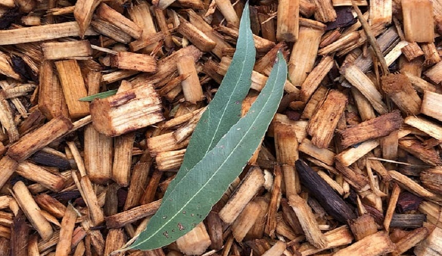 Green waste-to-energy - leaves on woodchips