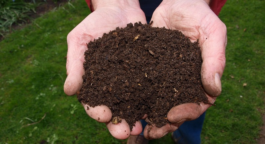 human body composting - hands holding soil