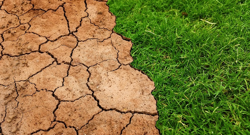 Climate change lawsuits - Global warming - dry land vs grass