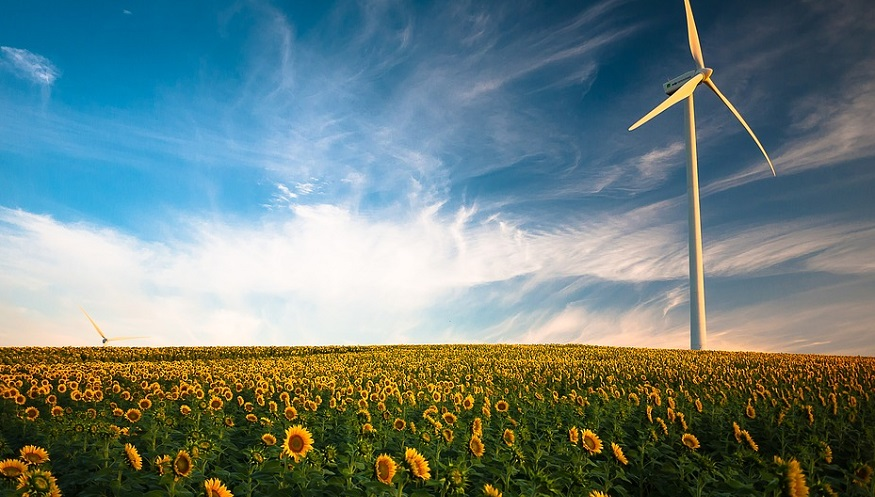 Renewable power goal - wind turbine in field of sunflowers