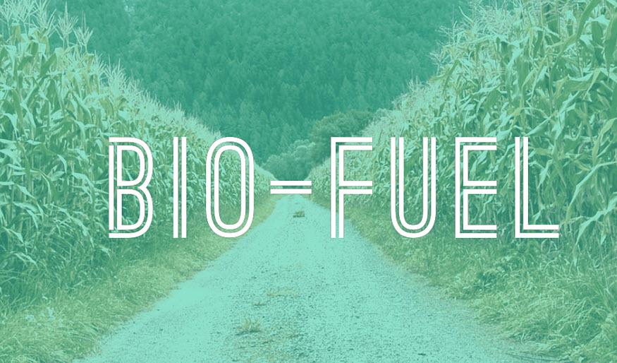 Bio-fuel Manufacturing