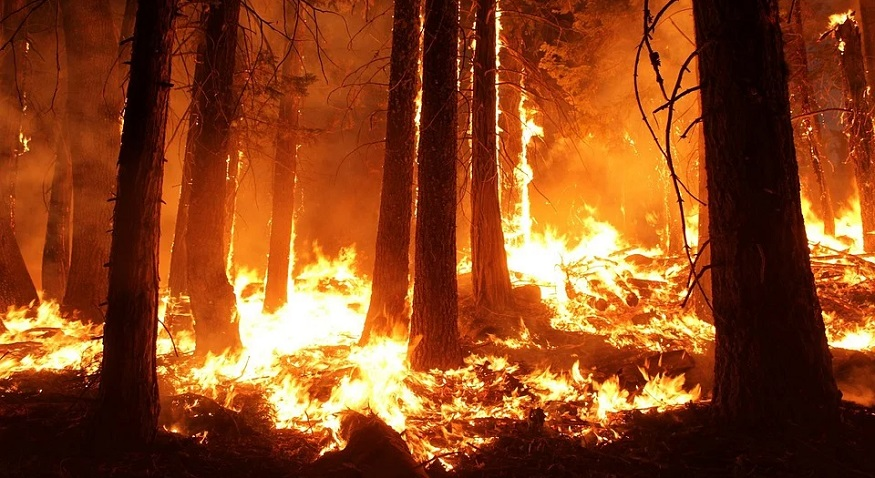 Siberian temperatures are breaking records, melting permafrost and lighting fires 1