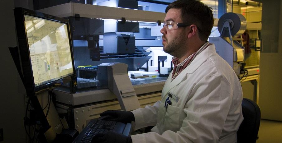 Sunlight photosensitive nanostructured electrodes produce green hydrogen fuel