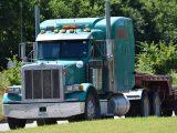 Immortal hydrogen consortium - Image of heavy-duty truck