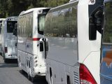 Fuel cell bus fleet - images of buses