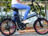 electronic bike battery and how to use it